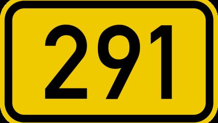 code 291