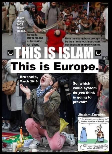 bracken-dhimmi