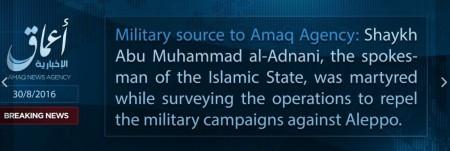 ISIS-adnani-dead