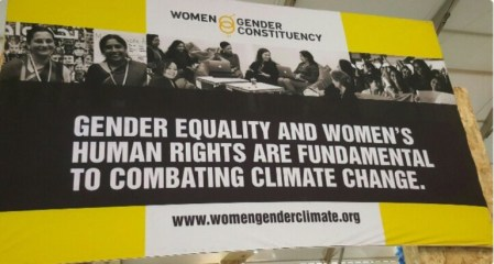 gender-climate