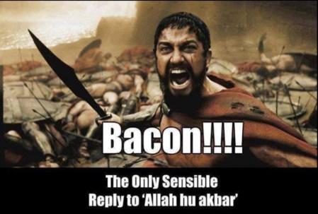 bacon-response