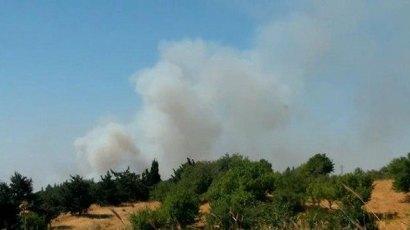 Israeli Golan Heights hit by Syrian spillover (Photo: Avihu Shapira)